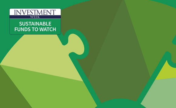 The first Sustainable Funds to Watch event takes place on 19 March