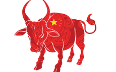The bull stocks to back in China