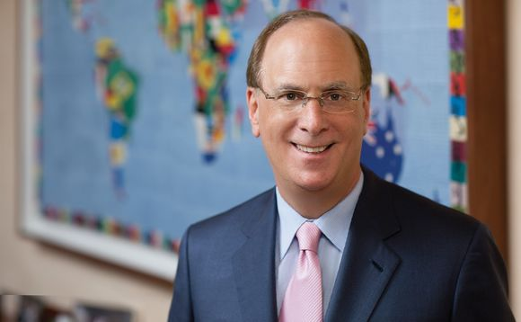 "The campaign 'BlackRock's Big Problem' targets CEO Larry Fink for failing to ""walk the talk"" on climate action"