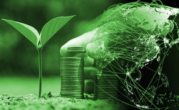 The fund is invested in green bonds issued in hard currency primarily by corporates