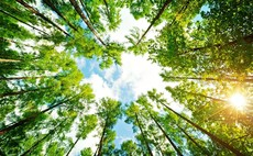 Industry Voice: Sustainability is key for value creation