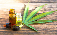 The Medical Cannabis and Wellness UCITS ETF launched on 13 January