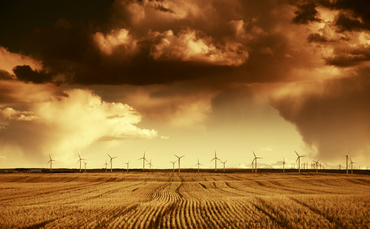 IW Long Reads: Are carbon offsets the answer to the climate change crisis? - Investment Week
