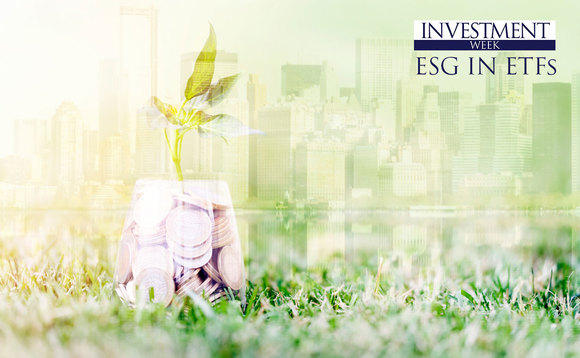 Which small cap stocks have the highest ESG ratings?